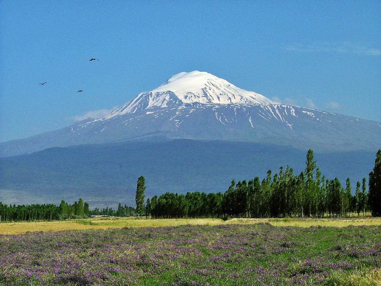Góra Ararat, fot. Henri Nissen/Wikipedia