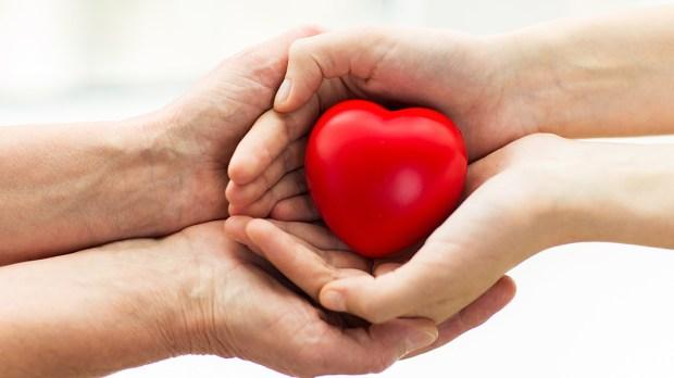 Dwie ręce trzymające serce