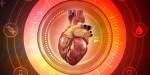 Grafika komputerowa ludzkiego serca
