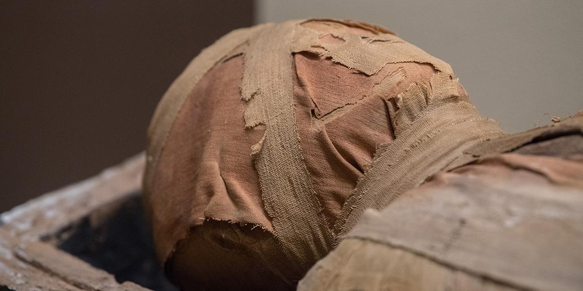 Głowa mumii w muzeum