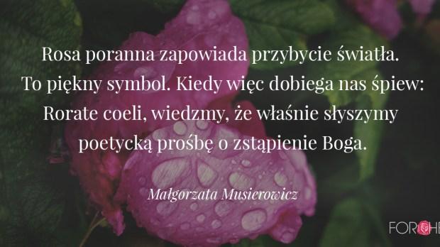 Cytat na adwent Małgorzaty Musierowicz