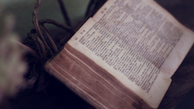 OLD,BIBLE