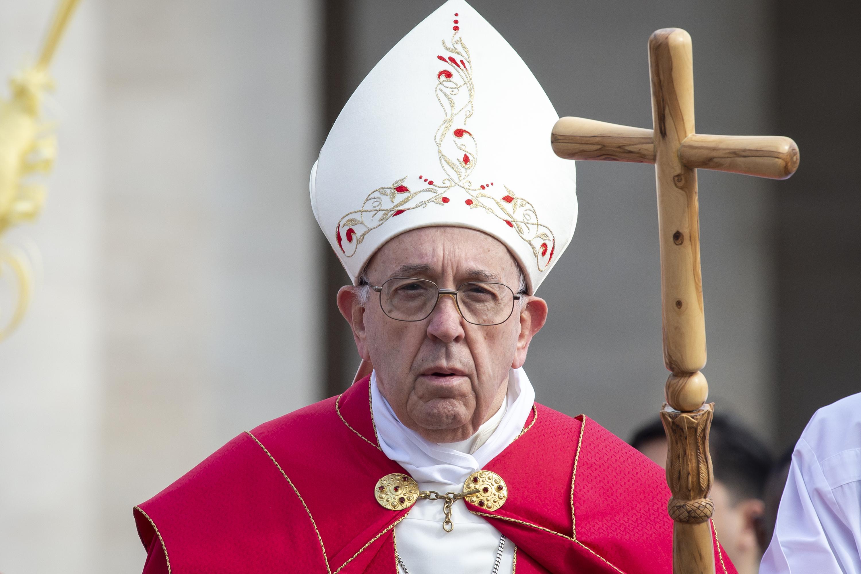 POPE PALM