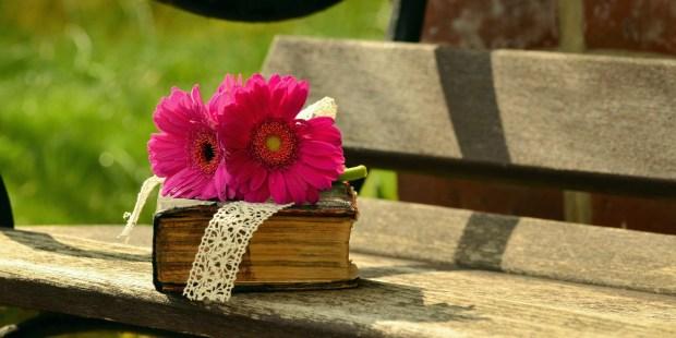 Biblia na ławce z różowym kwiatem