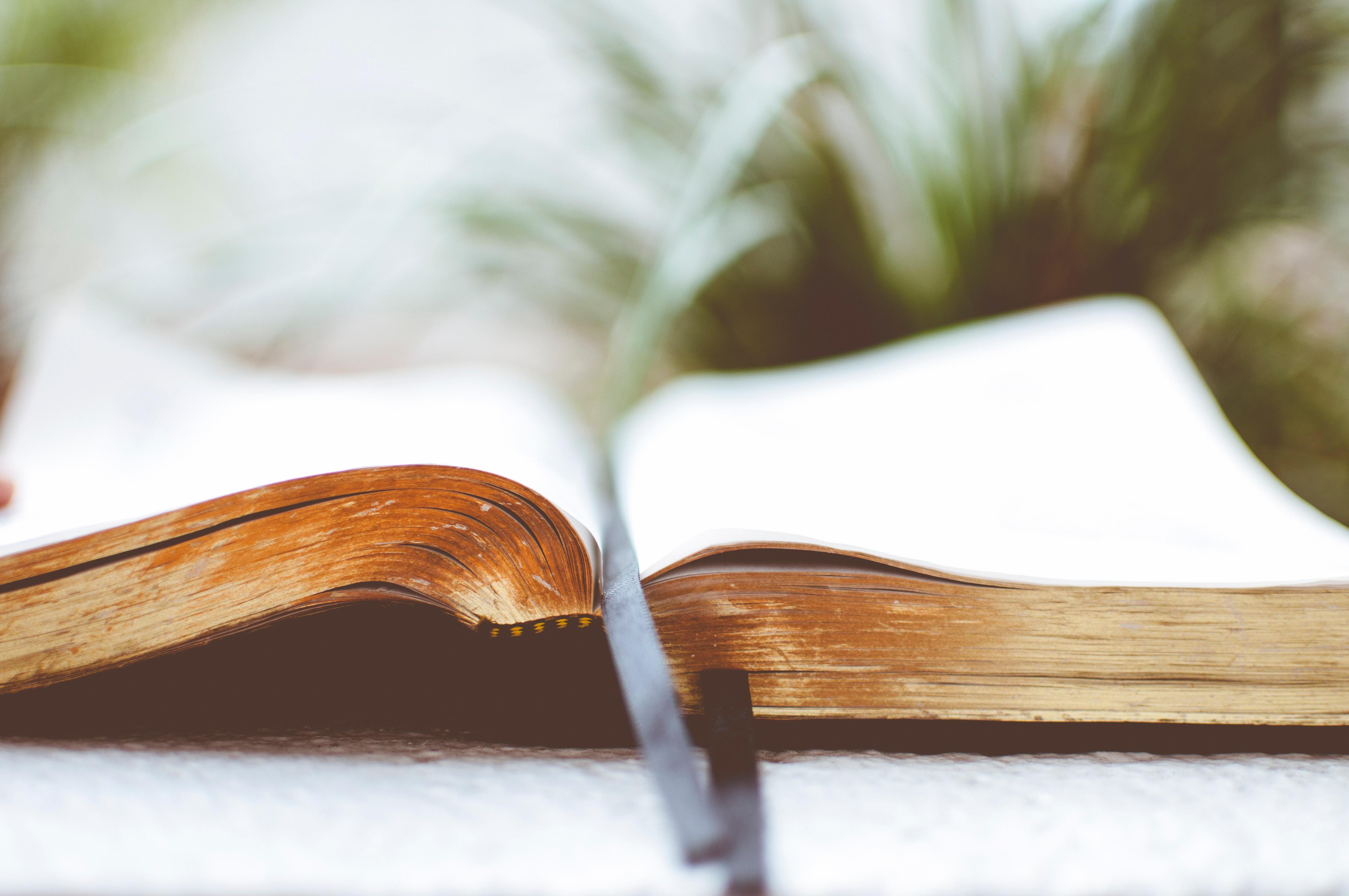 Otwarta Biblia