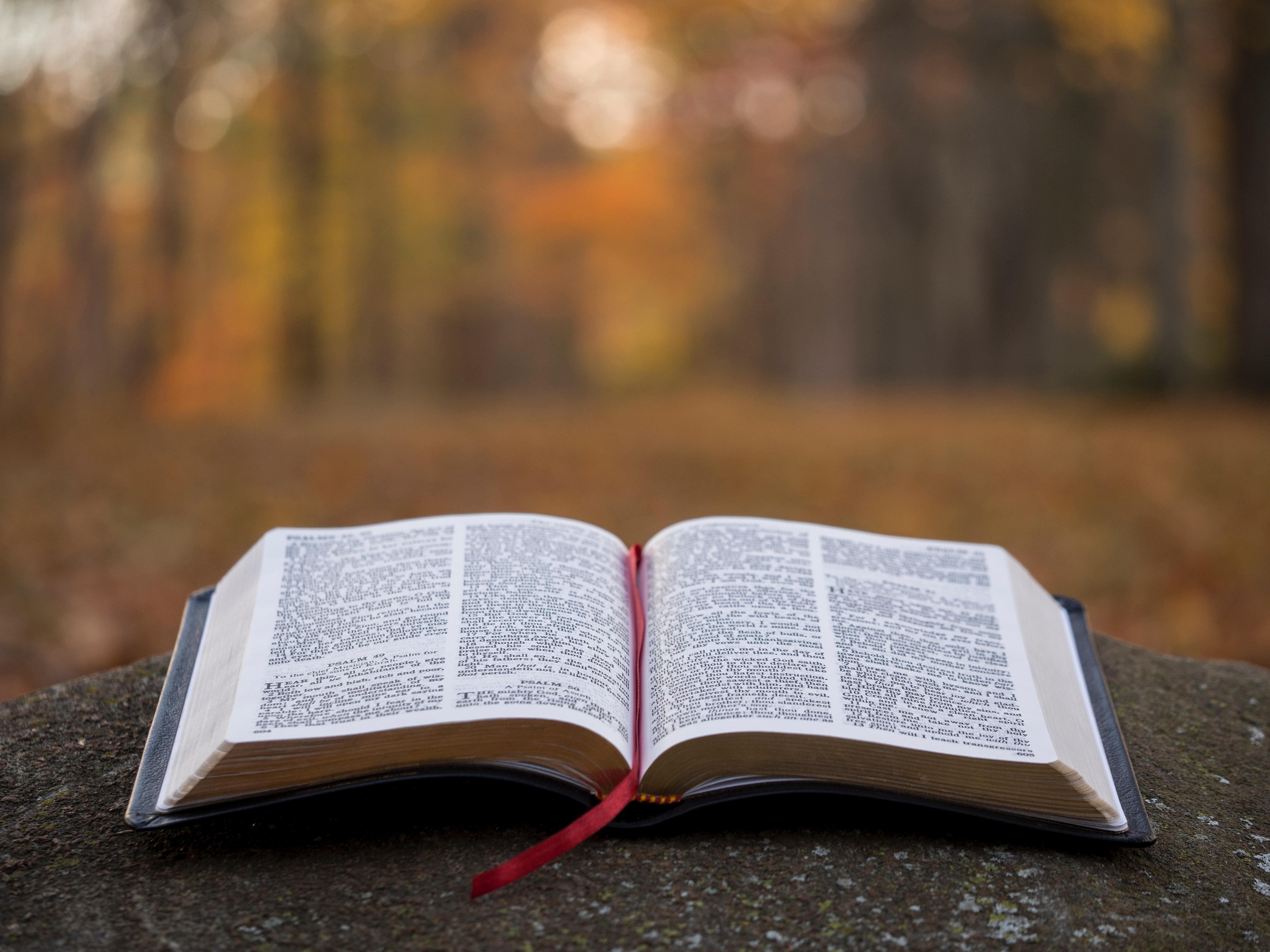 Otwarta Biblia na kamieniu