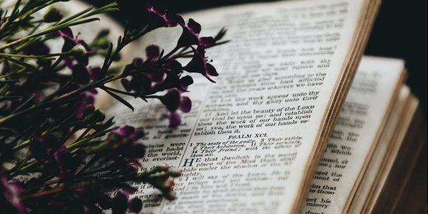 Otwarta Biblia z leżacymi kwiatami