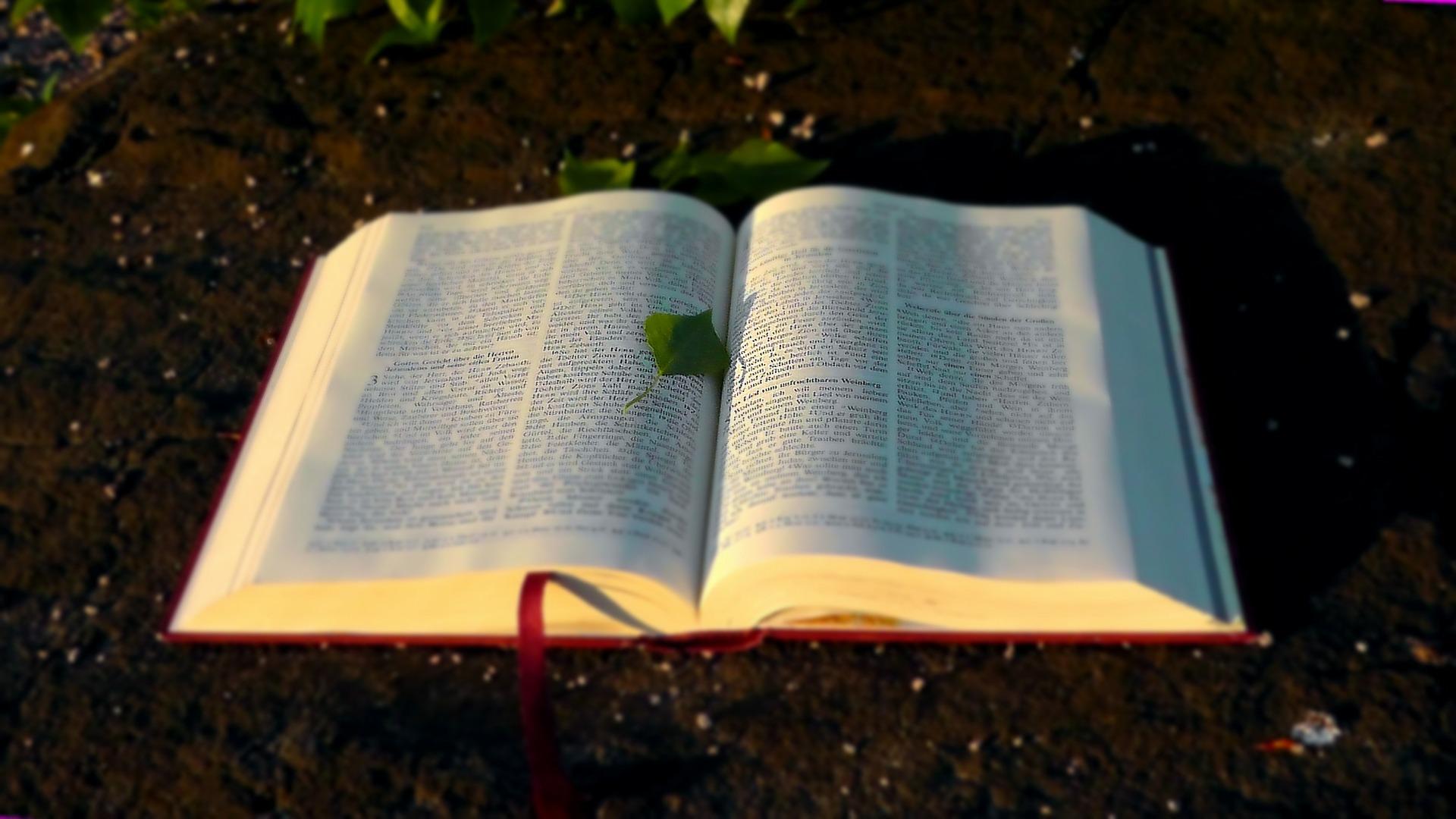 Biblia otwarta położona na ziemii