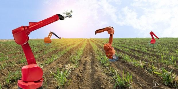 ROBOTY NA FARMIE